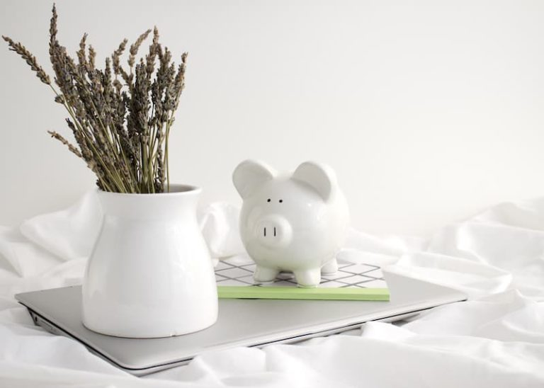 Money Beliefs: Piggy Bank On Laptop